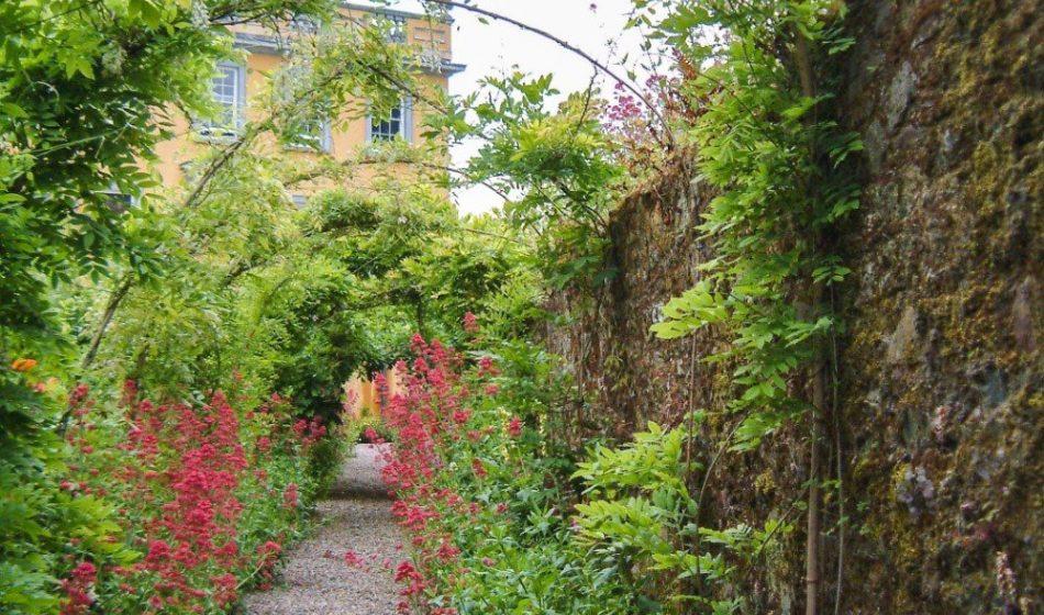 Ballynatray Estate - Gravel Garden Walkway
