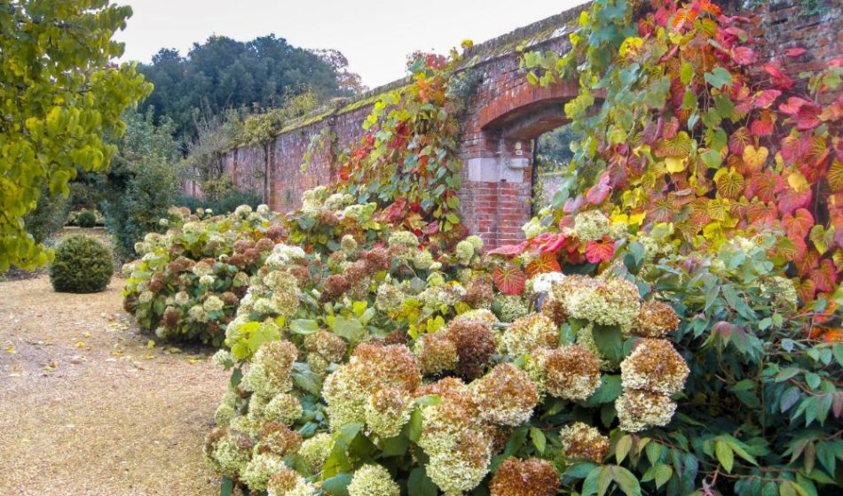 Broadlands Estate Hampshire - Autumn Colours