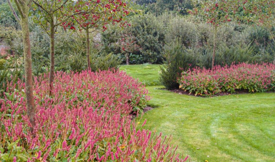 Broadlands Estate Hampshire - Lawns, Trees and Borders