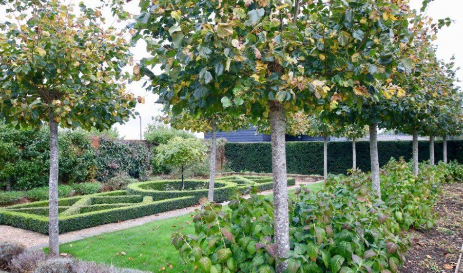 Farmhouse Hampshire - Formal Tree Planting