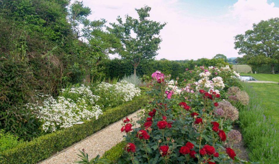 Farmhouse West Sussex - Flowers Along a Gravel Walkway