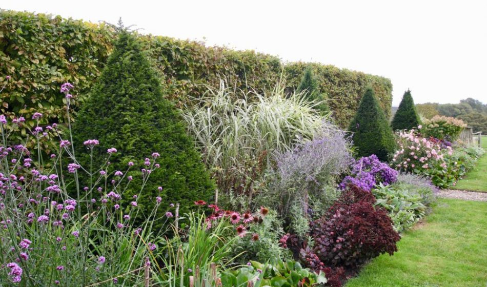 Farmhouse West Sussex - Hedges and Flower Borders