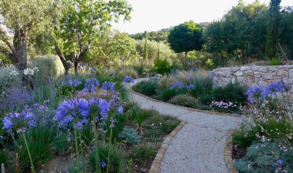 Koukos Country Villa, Corfu - Alium Border Planting