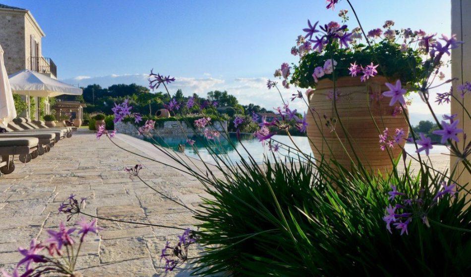 Koukos Country Villa, Corfu - Poolside Planting