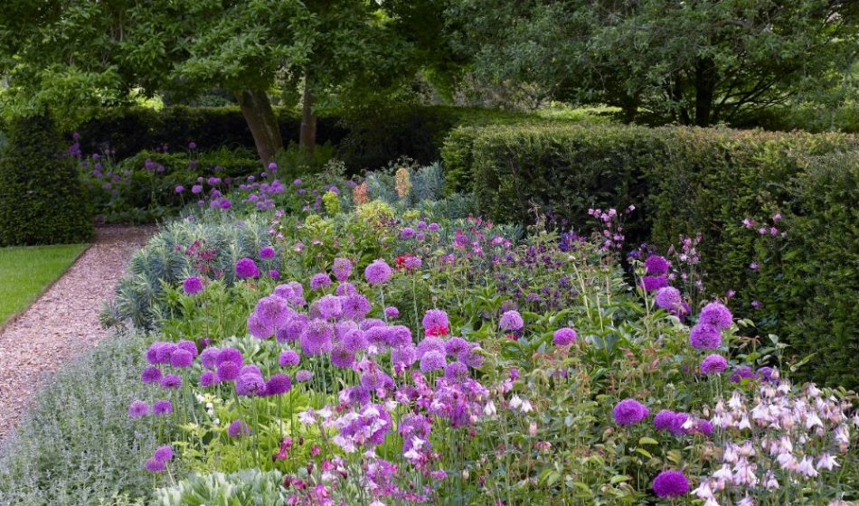 New Cottage Orné, Hampshire - Flower Border with Alium