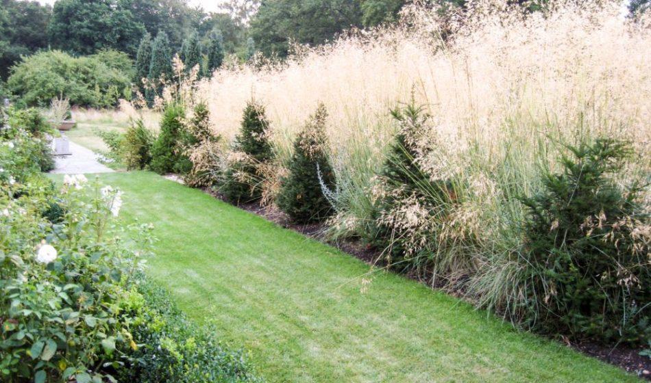 Old Rectory Berkshire - Tall Border Grasses