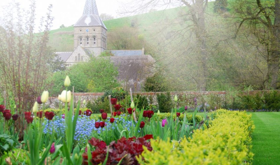 Village House Hampshire - Spring Tulips with Church in Background