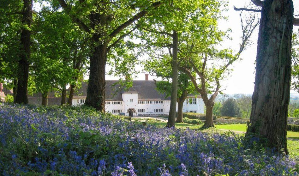 Marsh Court Hampshire - Bluebells