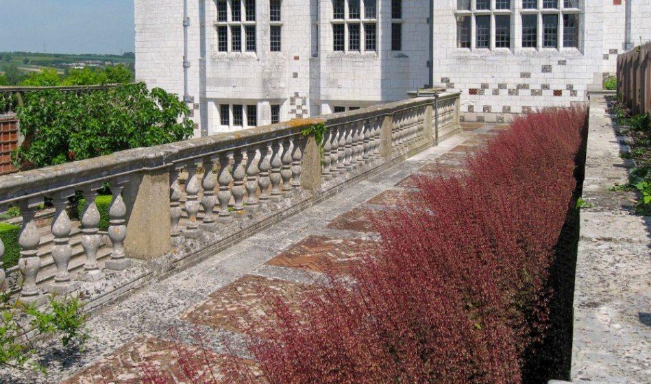 Marsh Court Hampshire - Terrace Planting