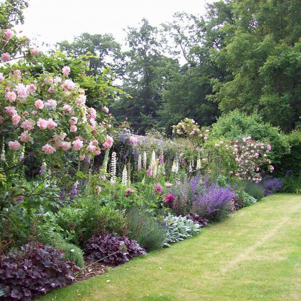 Shrub, Rose and Herbaceous Borders