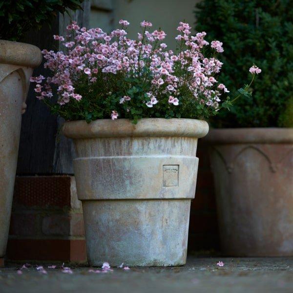 Stemma pot by Italian Terrace